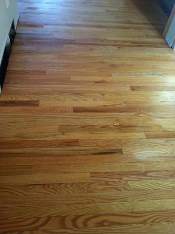 Danish Oil for Hardwood Floor - Canadian Woodworking and Home